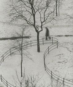 André Kertész, Washington Square Park, 1953
