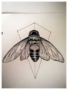 Dotwork Cicadas by Mathias Schmidt, via Behance
