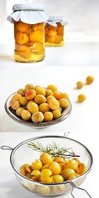Potted yellow plums with rosemary • Eingemachte Mirabellen mit Rosmarin • by…