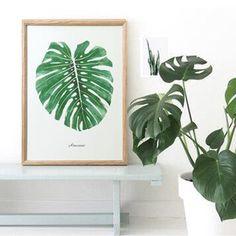 [尚森]北欧装饰画组合客厅植物挂画卧室床头画简约多款 预售
