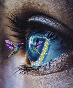 Spiritual Quotes Meditations & Beautiful Photographs added a new photo. Beautiful Eyes Color, Pretty Eyes, Cool Eyes, Eyes Artwork, Aesthetic Eyes, Crazy Eyes, Eye Photography, 5d Diamond Painting, Eye Art