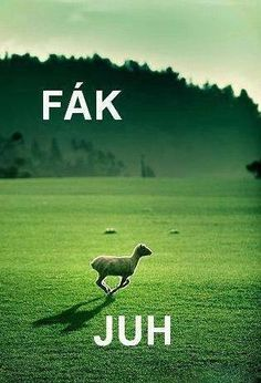 Fák juh :D Funny Cute, The Funny, Funny Fails, Funny Jokes, Comedy Memes, Funny Moments, Funny Things, Jokes Quotes, Just Kidding