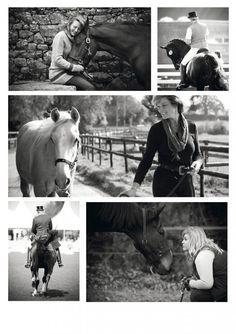 horses-1 Horse Photography