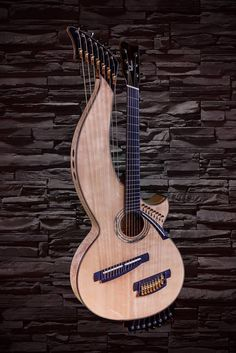 21 string harp-guitar-001