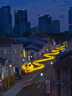 Year of the Snake in Chinatown ~ Singapore