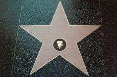 Hollywood Walk of Fame Star Generator- type your name in and it will add it to the star