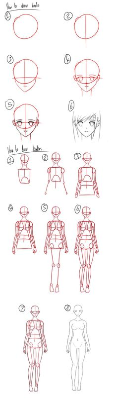 Tutorial - How to Draw Anime Heads/Female Bodies by Micky-K.deviantart.com on @deviantART: