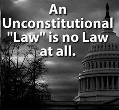 Conservative image of An Unconstitutional Law! Wisdom Meme, Patriotic Words, Socialism, Founding Fathers, Political News, First Nations, A Team, Cool Girl, Liberty