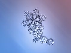 Macro photos of snowflakes show impossibly perfect designs- with such beautiful design - there must be a designer! :)