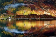 Fall in the Scottish Highlands  Gorgeous fall hues color the land in the autumn, tinging the Scottish highlands with oranges, yellows, and reds. image: Sorin Rechitan
