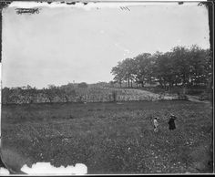 Woods where Gen. J.F. Reynolds was killed. Gettysburg, Pennsylvania, 1863.