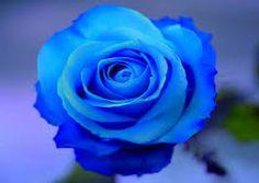 N.º 5: AZUL  O Raio Cromático Azul é considerado o estabilizador. É a cor da verdade, da pureza e da perfeição. Nascer sob esse raio pode indicar uma pessoa que carrega dentro de si alguma fé, podendo ser simplesmente a fé em si mesma. São pessoas serenas, mas devem ter cuidado para não se tornarem demasiado fechadas. Assim, se nasceste, por exemplo, no dia 29 (de qualquer mês), a tua cor é o Laranja, porque 2 + 9 = 11 e 1 + 1 = 2.