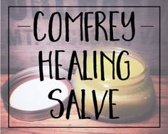 This homemade comfrey healing salve is a must-have for cuts, stings, bruises, and especially poison ivy. It's a true staple for first aid on the homestead.