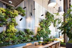 Check Out This Brooklyn Hotel's Dramatic Living Wall Installation - Photo 3 of 7 - Dwell