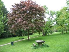 Road trips are the perfect opportunity to plan a picnic in the park - Meanwood Park Picnic Area, Leeds Leeds City, Picnic In The Park, Picnic Area, City Life, Country Living, Stepping Stones, Fields, How To Plan, Road Trips