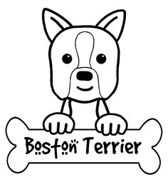 Boston Terriers are happy and friendly, elegant in black and white. Description from m5x.eu. I searched for this on bing.com/images