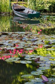 Probably a good place to fish for bass and pan fish (blue gills, etc). Water Lilies Painting, Boat Painting, Lotus Garden, Water Garden, Pond Life, Nature Aesthetic, Lily Pond, Amazing Nature, Nature Photos