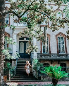 Savannah Bucket List: 44 Fun Things To Georgia's Historic City Savannah Georgia Travel, Visit Savannah, Savannah Chat, Historic Savannah, Downtown Savannah, The Places Youll Go, Places To Go, East Coast Road Trip, Down South