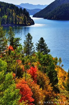 Fall color in the green Idaho mountains along the Palisades Reservoir. Photography by James Neeley.