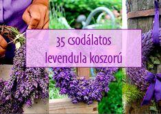 35 csodálatos levendula koszorú | PaGi Decoplage