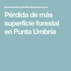 Pérdida de más superficie forestal en Punta Umbría