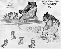 Character development for the Owl from Disney's Bambi