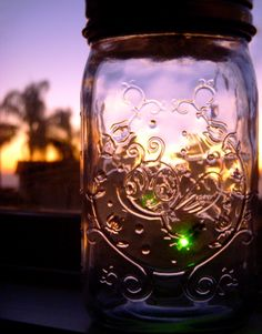 Lightning Bugs In a Jar.for years I thought lightning bugs smelled like peanut butter.we always used peanut butter jars with holes pounded into the lids to collect them! Twinkle Lights, Twinkle Twinkle, Lighting Bugs, Fireflies In A Jar, Catching Fireflies, Summer Songs, Gypsy Life, Faeries, Lightning
