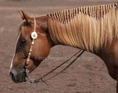 Love this braided/banded mane! would look cool for fun shows!