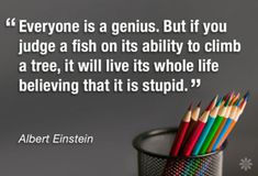 Everyone is a genius...
