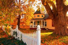 oranges Haus im Herbst