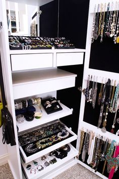 W/In Closet Jewelry Organizer
