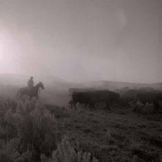 "All images by Adam Jahiel  ""The Last Cowboys"""