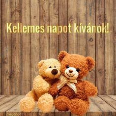 Share Pictures, Animated Gifs, Teddy Bear, Funny, Animals, Smile, Decor, Cute Bears, Animales