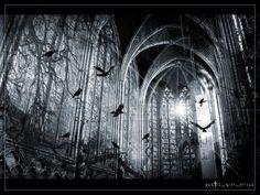 #Gothic Landscapes & Architecture