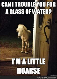 Can I trouble you for a glass of water?