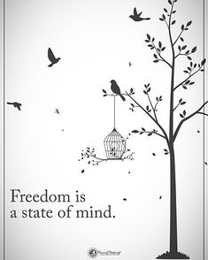 """18.9k Likes, 63 Comments - Positive + Motivational Quotes (@powerofpositivity) on Instagram: """"Tag someone who needs to read this.  Freedom is a state of mind. #powerofpositivity"""""""