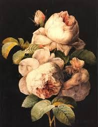 """Pierre-Joseph Redouté (1759 - 1840), was a Belgian painter and botanist, known for his watercolours of roses, lilies and other flowers at Malmaison. He was nicknamed """"The Raphael of flowers"""". He was an official court artist of Queen Marie Antoinette, and he continued painting through the French Revolution and Reign of Terror. Redouté survived the turbulent political upheaval to gain international recognition for his precise renderings of plants, which remain 'fresh' to the present times."""