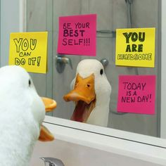 Love the Aflac duck!