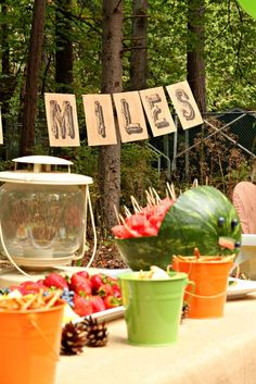 """Photo 1 of 8: Camping / Birthday """"Camp Miles - First Birthday"""" 