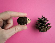 Tiny knit hedgehog meets his long-lost cousin. New pattern from Mochimochi Land!