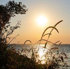 outer banks - sound side sunset