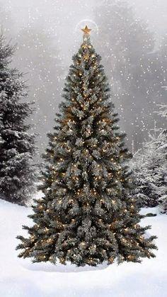10 Awesome Christmas Preparing Ideas