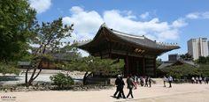 #Deoksugung Palace in Seoul, Korea | 덕수궁
