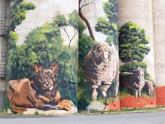 Murals Street Art, Street Art Graffiti, Mural Art, Travel Oz, Spray Can Art, Hidden Images, Train Art, Farm Art, Building Art