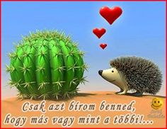 love, hedgehog, cactus x 1750 px] - Cartoons/Digital art - Pictures and wallpapers Hedgehog Illustration, Gif Mania, Tumblr Pages, Bad Romance, Cute Hedgehog, Cactus Art, All Things Cute, Cacti And Succulents, Clipart