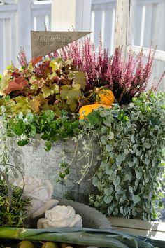 Trädgårdsliv på Högagärde: planteringar o snittblommor