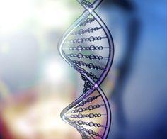 Laboratorio de genética forense: se llevan tomadas 1.600 muestras de ADN