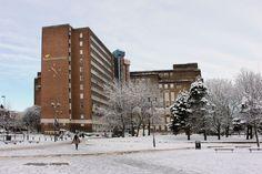 Snowy Aston University campus. Dec 2017. Photo: Annette Rubery. Aston University, History, Building, Outdoor, Outdoors, Buildings, History Books, Outdoor Games, Historia