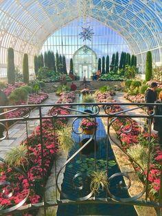 Futuristic Architecture, Beautiful Architecture, Beautiful Buildings, Arquitectura Wallpaper, Celosia Flower, Como Zoo, Beautiful Flowers, Beautiful Places, Hillside Garden