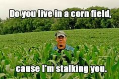 Do you live in a cornfield because i'm stalking you. Funny Pick-up lines Bad Pick Up Lines, Pick Up Lines Cheesy, Pick Up Lines Funny, Country Pick Up Lines, Amazing Pick Up Lines, Redneck Pick Up Lines, Creepy Pick Up Lines, Clean Pick Up Lines, Funny Pickup Lines
